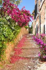 Romantic narrow street with blooming bougainvillea flowers on th