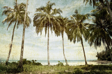 vintage palm trees background