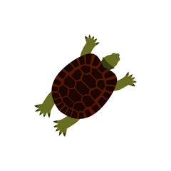 Turtle icon in flat style isolated on white background. Animal symbol