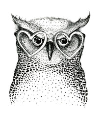 Hand drawn black white illustration owl fly bird. Art Coloring b