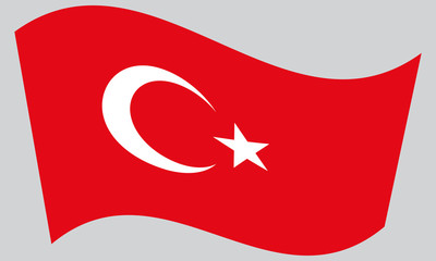 Flag of Turkey waving on gray background