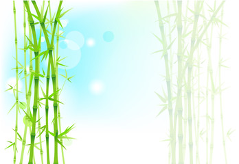 Bamboo asian background
