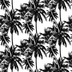 tropical palms pattern