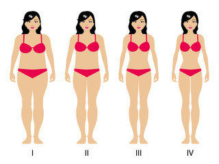 Vector illustration of gradual weight loss