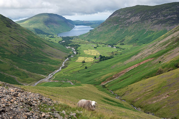 Wasdale Head and Wast Water viewed from the path to the summit of Great Gable in the Lake District National Park, Cumbria, England.