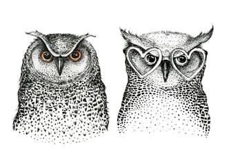 Hand drawn black white illustration owl fly bird. Art Coloring