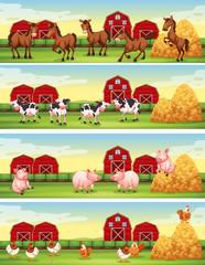 Four scenes of farm animals in the farm