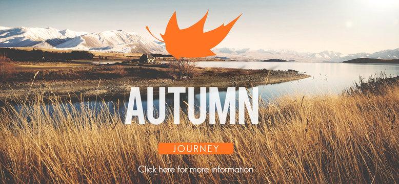 Autumn Fall Foliage Fresh Nature Season Vibrant Concept