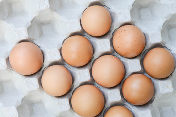Eggs in paper tray - Top view