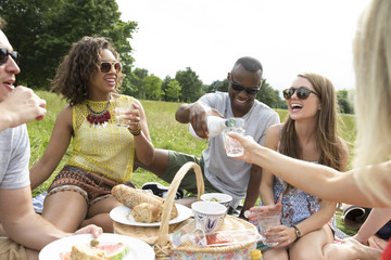 Friends Enjoying Drinks On Countryside Picnic