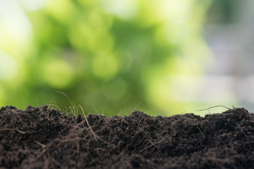 empty soil ready for plant with green leaf background