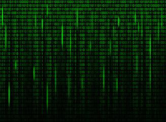 Computer screen binary data code