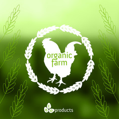 Organic farm labels with cock, eggs and ears of wheat. Eco products concept