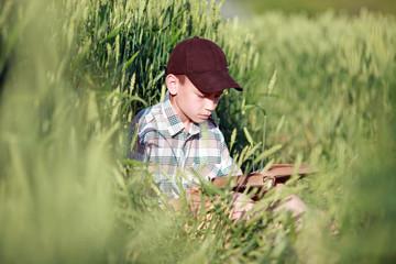 мальчик читает книгу в поле пшеницы