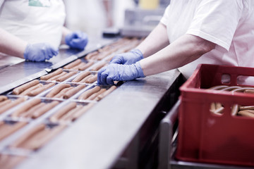Factory workers on tofu sausage production line