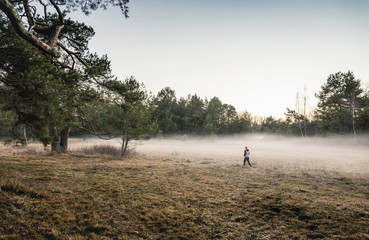 Person on misty open field, Augsburg, Bavaria, Germany