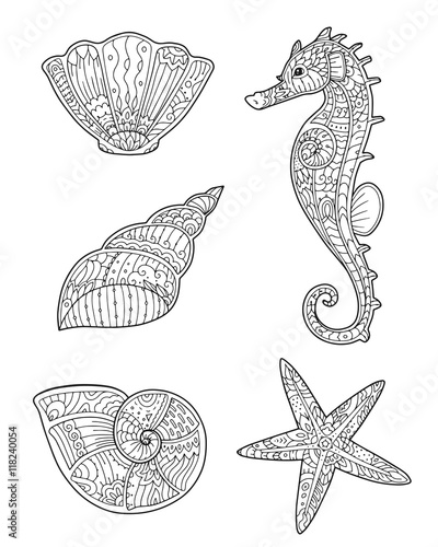 Adult Coloring Page With Seashells Seahorse And Starfish In Zentangle Style Doodle Hand Drawn