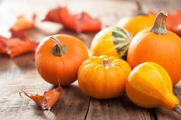 decorative mini pumpkins autumn leaves for halloween thanksgivin