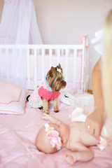 Little dog stands over the newborn child