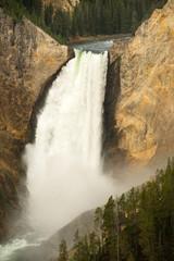Waterfall Yellowstone National Park Wyoming United States