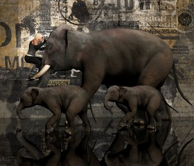Female Riding Elephant Trunk 3D Rendering Background Created In PhotoShop