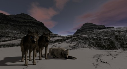 Wolves On A Rocky Mountain Plain 3D Rendering