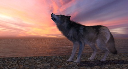 Wolf Howling At The Sunset 3D Rendering