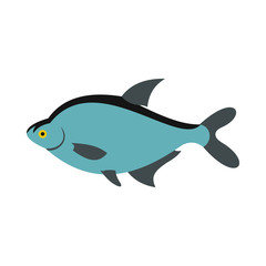 Fish icon in flat style isolated on white background. Sea creatures symbol