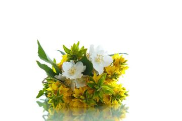 beautiful yellow summer flowers