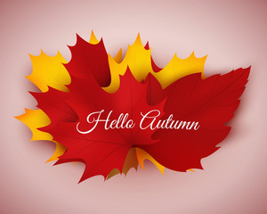 Hello autumn. Vector autumn background with colorful leaves