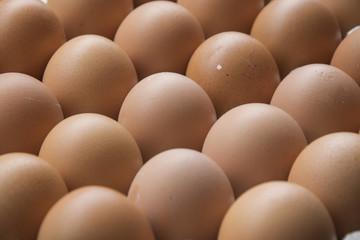 Eggs in cardboard, full frame .