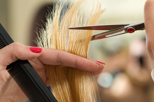 Close up view of female hairdresser hands cutting hair tips