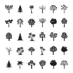 Set of Balck Trees and Leafs. Vector Illustration.