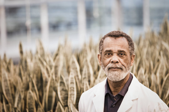 African American scientist working in greenhouse