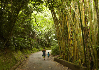 Mixed race mother and child walking on road in jungle