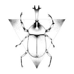 The Beetle. Sketch Artwork, Creative Idea, Innovative art, Concept Illustration, Tattoo Design.