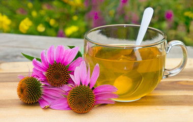 Cup of herbal tea from echinacea. Wall mural