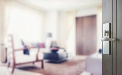 opened wooden door to modern living room interior