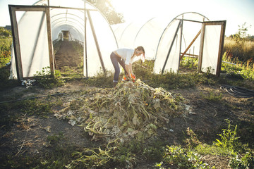Caucasian farmer weeding plants in greenhouse