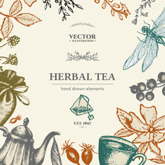 Herbal tea vector card design