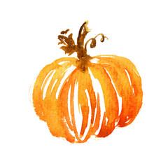 Watercolor pumpkin illustration