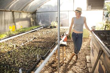Caucasian farmer admiring plants in greenhouse