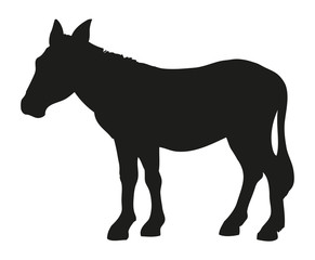 Donkey. Vector drawing