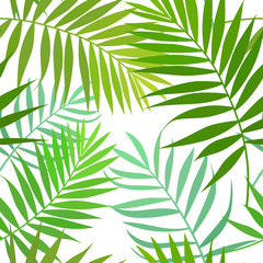 Seamless pattern of palm leaves, isolated on white background. Vector stock illustration.