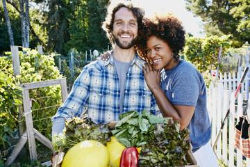 Couple harvesting vegetables in garden