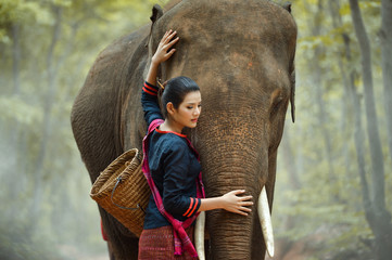 Young woman standing beside the elephant in forest