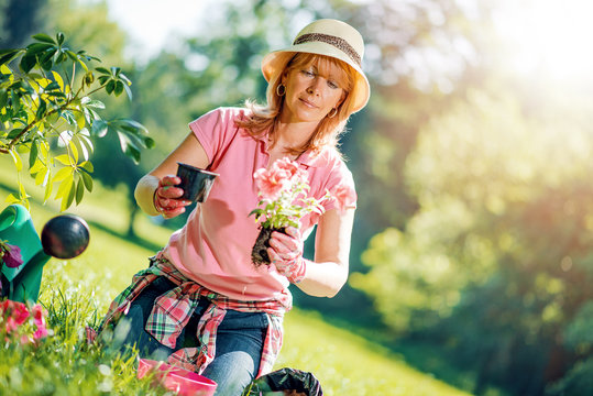 Portrait of mature woman gardening at home.