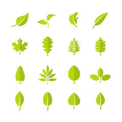 Wall Mural - Green leaves vector icons