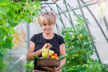 Woman with basket of greenery and vegetables in the greenhouse. Time to harvest.