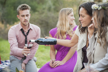 Friends drinking wine at picnic in park